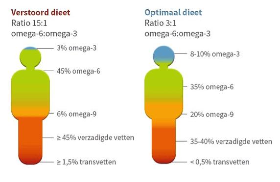 Omega-3 Omega-6 verhouding