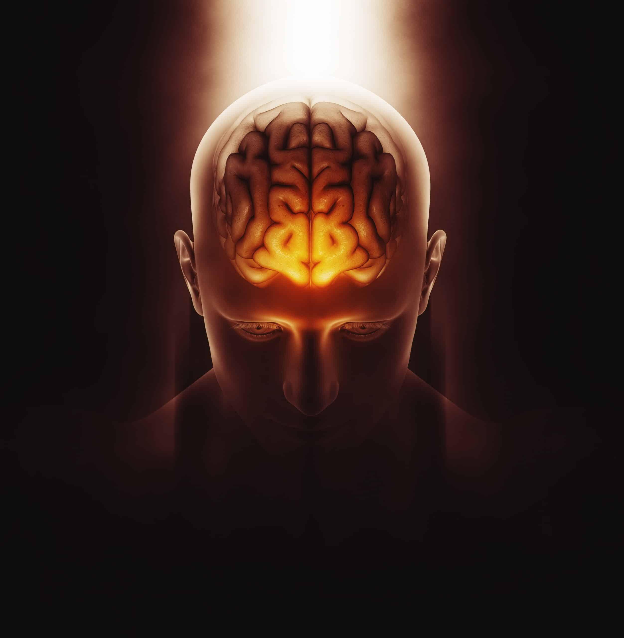 Gezonde werking van de hersenen met visolie pillen